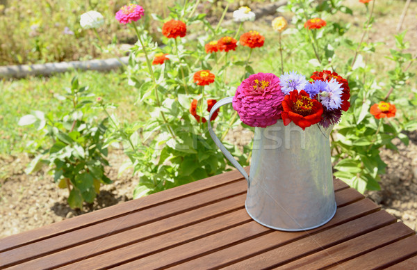 Stock photo: Arrangement of zinnias and cornflowers in a metal jug outdoors