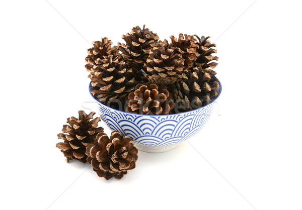 Fir cones arranged in and around a blue and white bowl Stock photo © sarahdoow