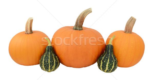 Three orange pumpkins with two green ornamental gourds Stock photo © sarahdoow