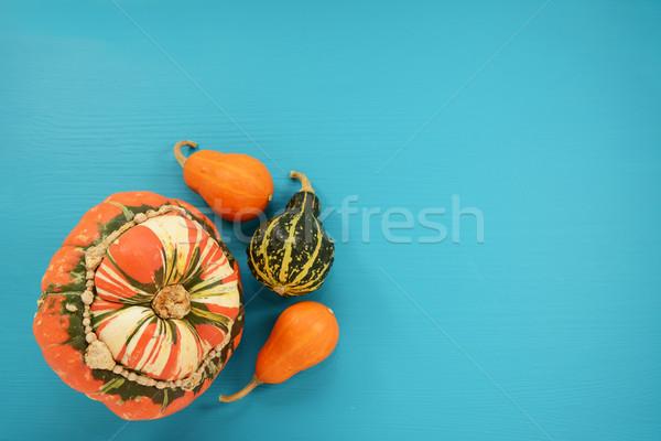 Tulband squash oranje groene klein Stockfoto © sarahdoow