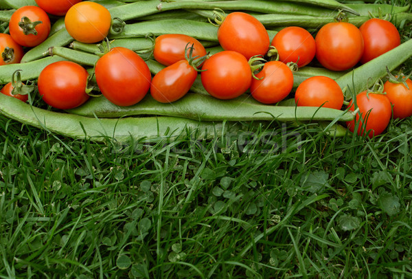 Row of red tomatoes on runner beans Stock photo © sarahdoow