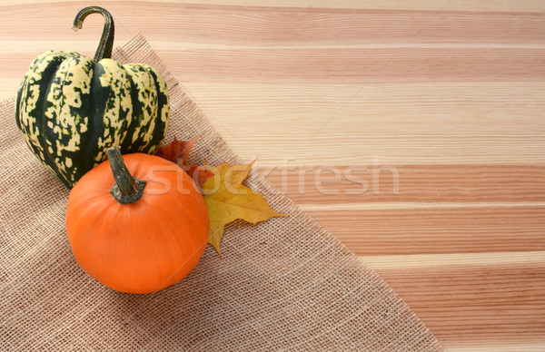 Harlequin and small orange pumpkin with maple leaves Stock photo © sarahdoow