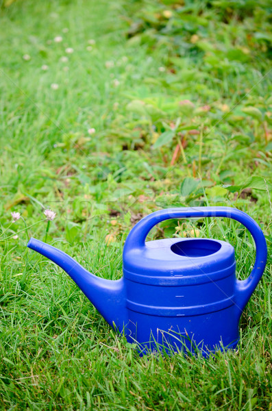 watering can Stock photo © Sarkao