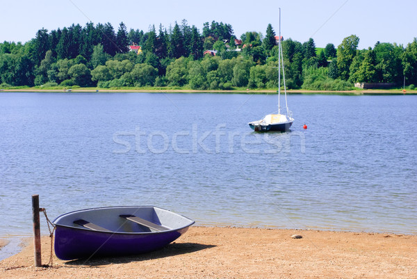 Verão lago árvore floresta paisagem árvores Foto stock © Sarkao
