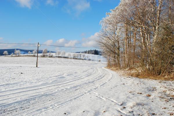 Czech landscape in winter Stock photo © Sarkao