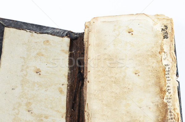 old book Stock photo © Sarkao