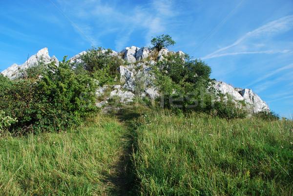 Cat's Rock - czech republic Stock photo © Sarkao