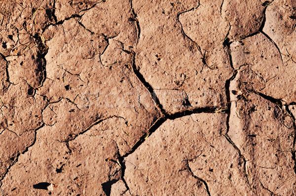 Repedt aszalt föld háttér Föld sár Stock fotó © Sarkao