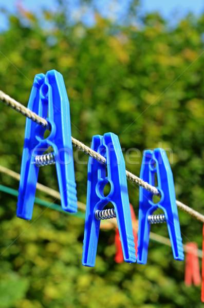 clothes pegs, laundry pins Stock photo © Sarkao