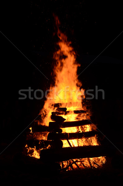 camping fire Stock photo © Sarkao