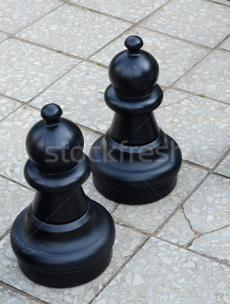 garden chess Stock photo © Sarkao