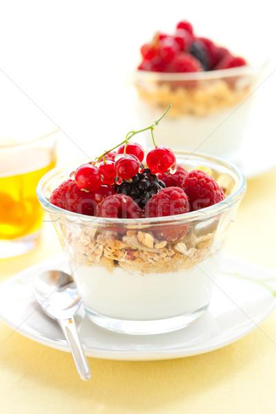 yogurt ,muesli ,berries and honey Stock photo © sarsmis