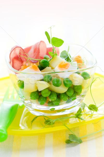 spring salad  Stock photo © sarsmis