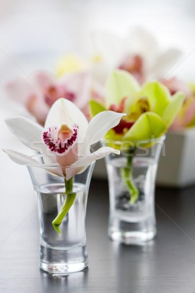 Orchidées faible verre beauté orchidée décoration Photo stock © sarsmis