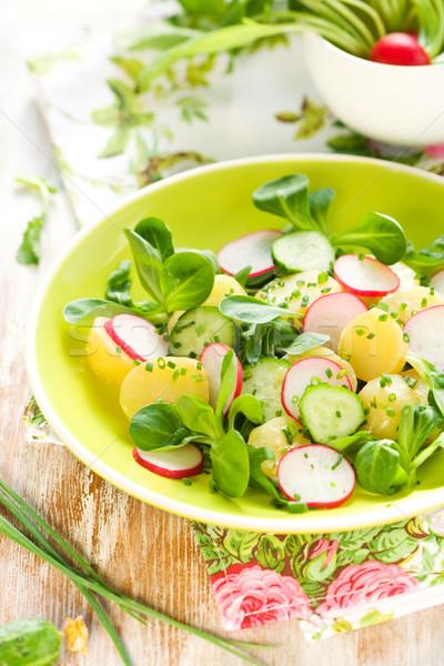 Potato salad with radishes Stock photo © sarsmis