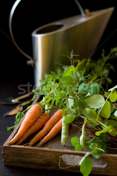 Friss répák zöld organikus kert szerszámok Stock fotó © sarsmis