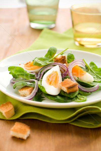 Salade vert pain déjeuner repas oignon Photo stock © sarsmis