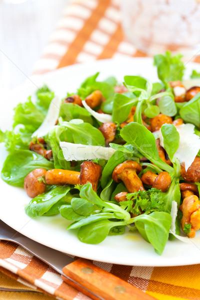 mushroom salad Stock photo © sarsmis
