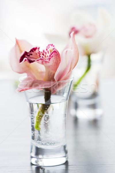 Orkide küçük cam güzellik orkide dekorasyon Stok fotoğraf © sarsmis