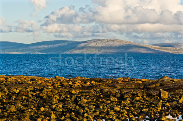 Irlandia miasta Fotografia front powrót Zdjęcia stock © sbonk