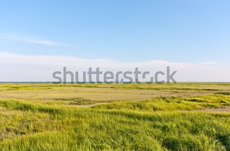 Atlantic City Skyline Stock photo © sbonk