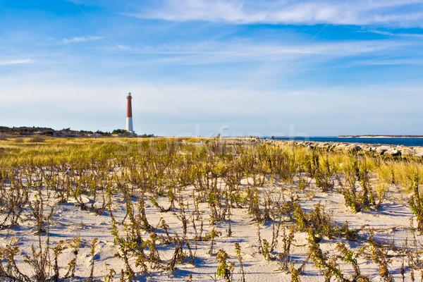 Deniz feneri long beach ada New Jersey eski gökyüzü Stok fotoğraf © sbonk
