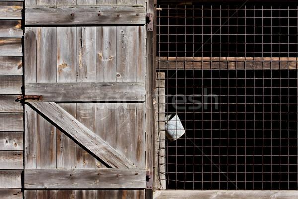 Barn and Bucket Stock photo © sbonk