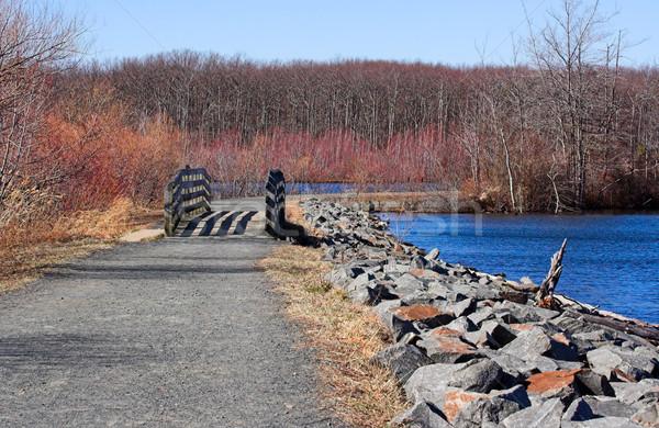 Zbiornik zimą ścieżka około New Jersey nice Zdjęcia stock © sbonk