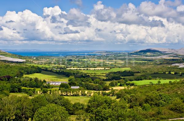 アイルランド 風景 緑 フィールド フォアグラウンド することができます ストックフォト © sbonk