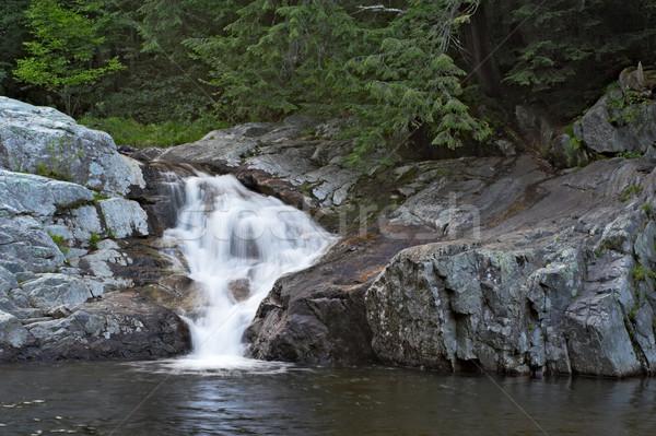 Buttermilk Falls Stock photo © sbonk