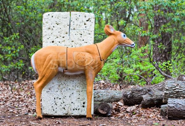 鹿 ターゲット 練習 弓 矢印 スポーツ ストックフォト © sbonk