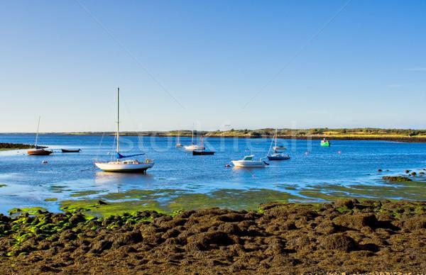 Boats on the Bay Stock photo © sbonk