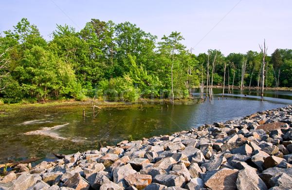 Water wildernis reservoir mooie rotsen bomen Stockfoto © sbonk