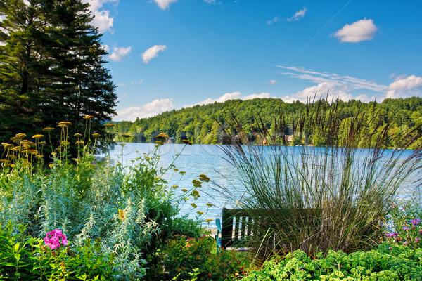 Scenic Lake Stock photo © sbonk