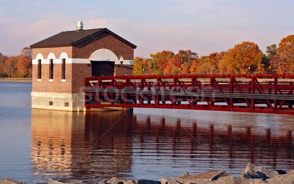 Zbiornik spadek kolorowy pozostawia wody Zdjęcia stock © sbonk