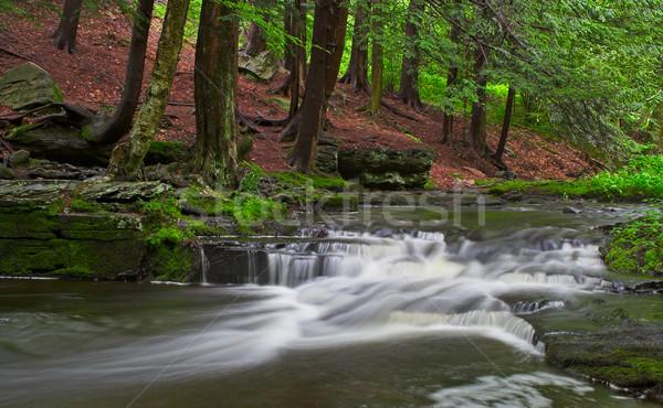 Little Falls Stock photo © sbonk