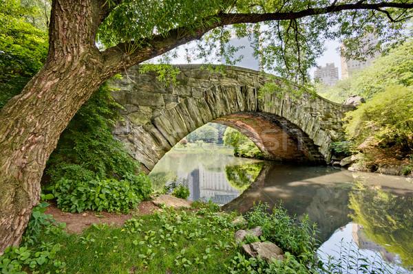 Ponte Central Park pedra nova iorque árvore grama Foto stock © sbonk