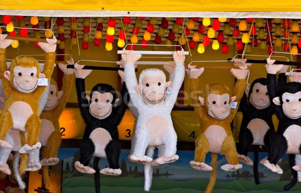 Prize Monkeys Stock photo © sbonk