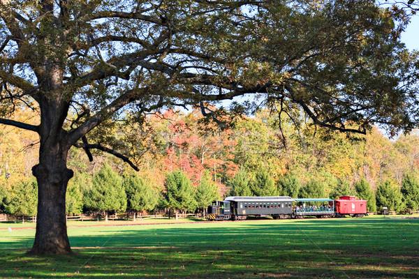 Oude trein park New Jersey bomen retro Stockfoto © sbonk
