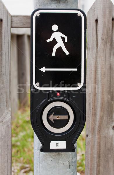 Electronic Walk Signal Stock photo © sbonk