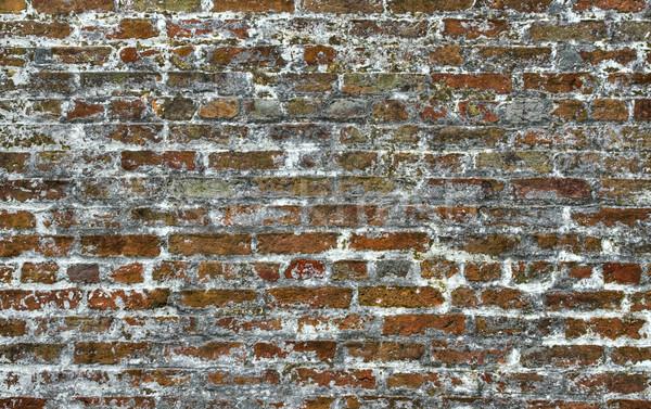 Brick Background Stock photo © sbonk