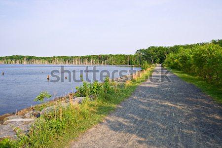 Tó kavicsút víztározó keret égbolt fa Stock fotó © sbonk