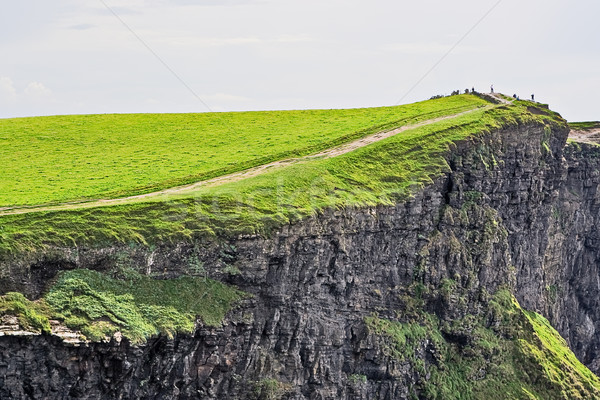 Cliffs of Moher Stock photo © sbonk