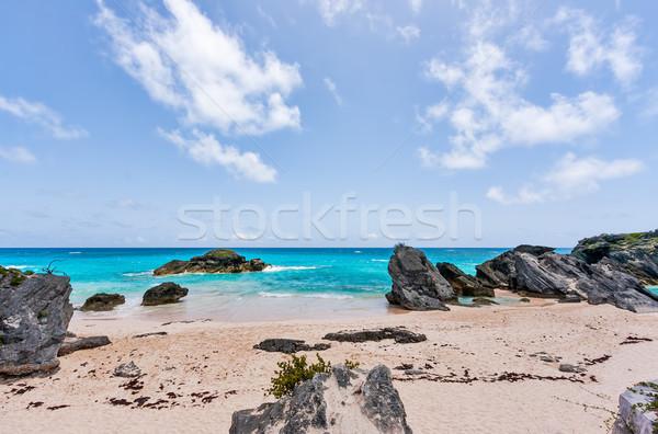 Photo stock: Horseshoe · sable · premier · plan · bleu · eau