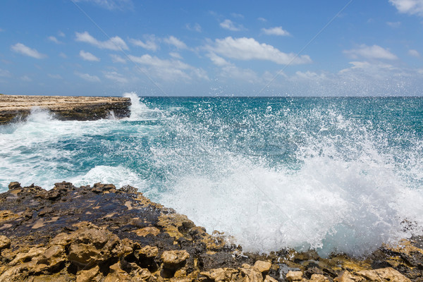 Waves Crashing on Rocks at Devil's Bridge Antigua Stock photo © scheriton