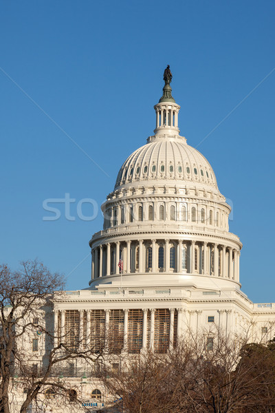 U.S. Capitol Dome Rear Face against Clear Blue Sky Stock photo © scheriton