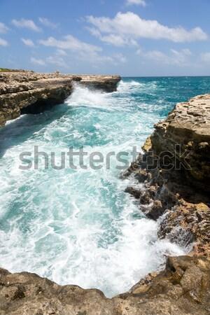 Scenic Ocean Coastline at Devil's Bridge Antigua Stock photo © scheriton