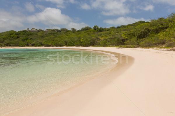 Arenoso praia tropical metade lua nuvens Foto stock © scheriton