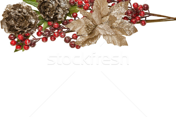 Sparkly Pewter Flowers Shiny Red Berries and Gold Leaves Border Stock photo © scheriton