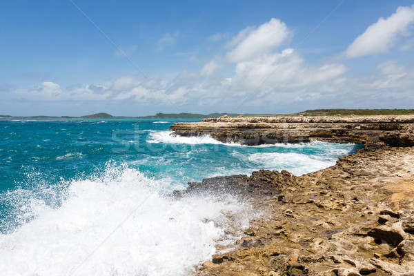 Waves Crashing on Coastline at Devil's Bridge Antigua Stock photo © scheriton